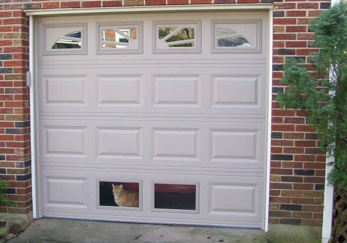 Cat In Window Bottom Of Garage Door