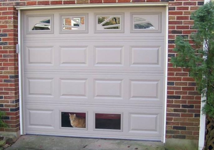 Cat in Window Bottom of Garage Door
